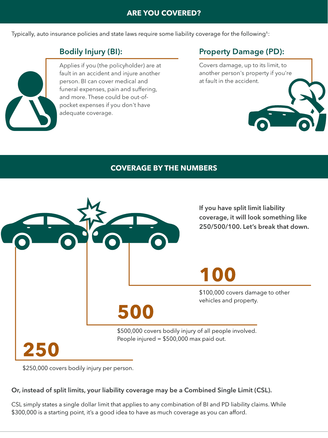 auto insurance coverage infographic