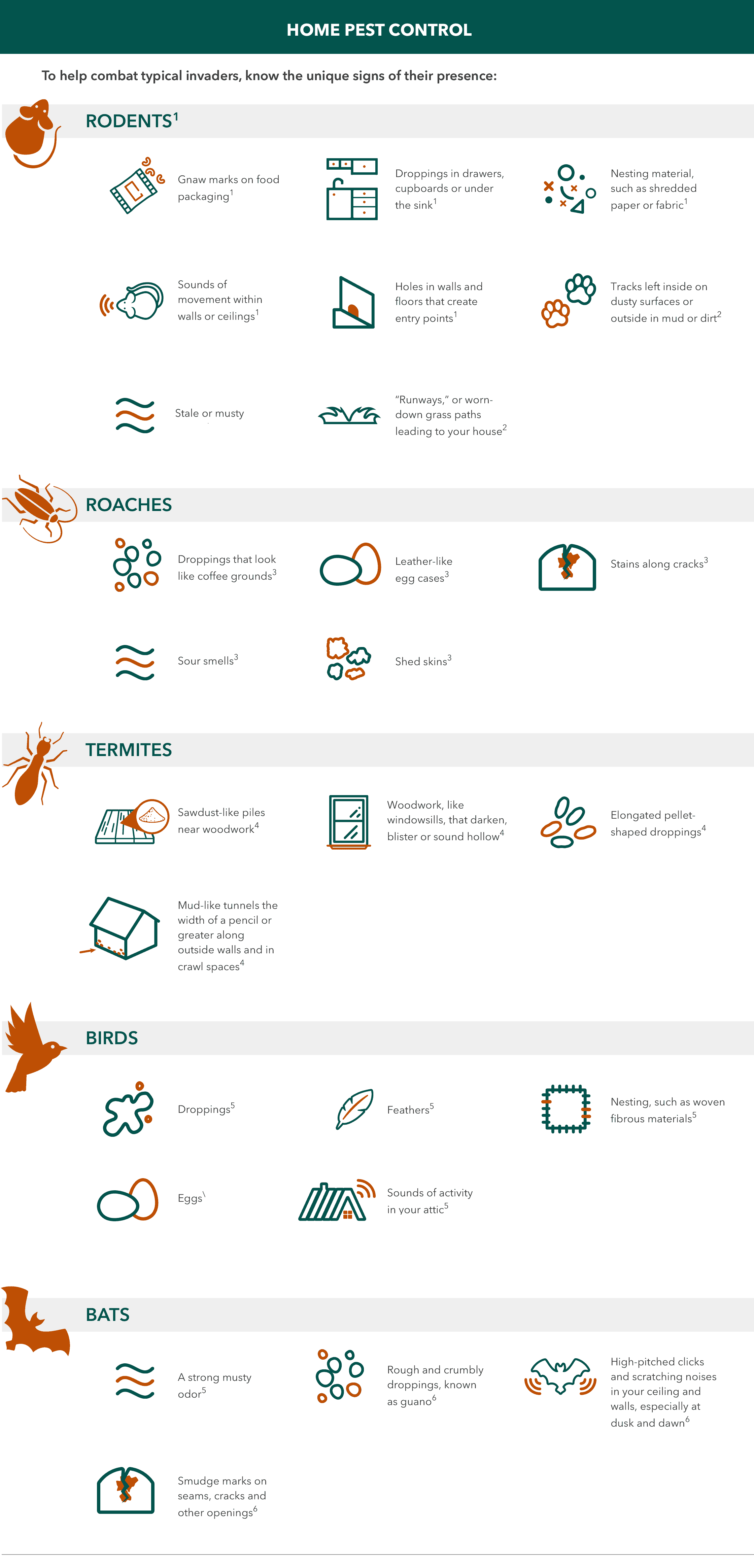 signs of pest infestation infographic
